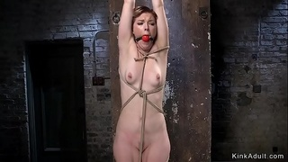 Hogtied squirter fisted and vibrated