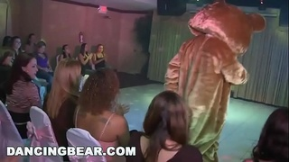 DANCING BEAR - Things Get Wild And Crazy At This Birthday Party